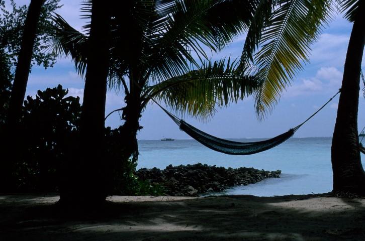hangmat onder palmbomen